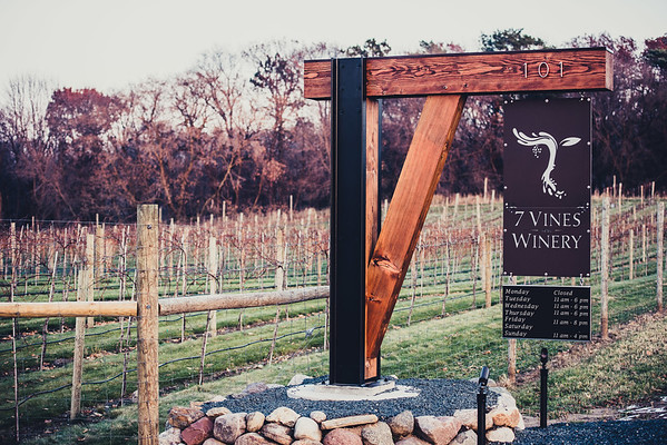 7 Vines-0001