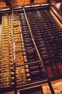 7 Vines-0010