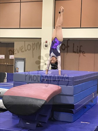 AAU State Gymnastics Championships - Session 2