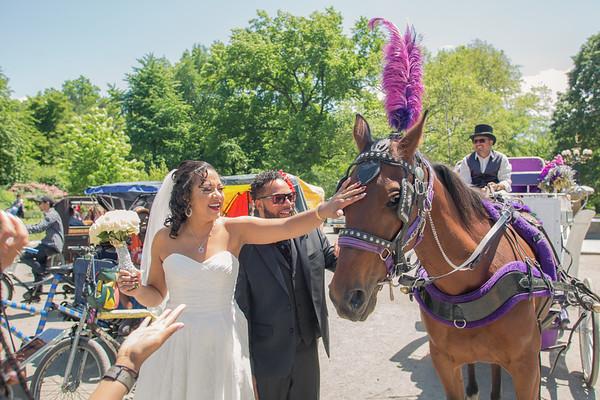 Aisha & Christopher Central Park Wedding-24