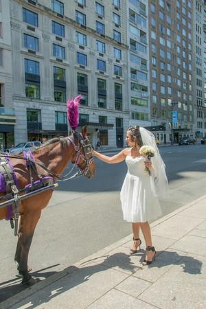 Aisha & Christopher Central Park Wedding-3