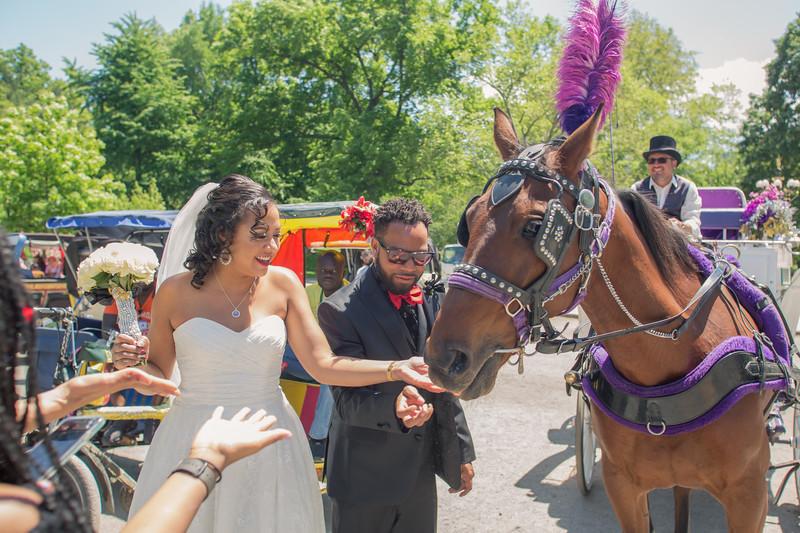 Aisha & Christopher Central Park Wedding-23