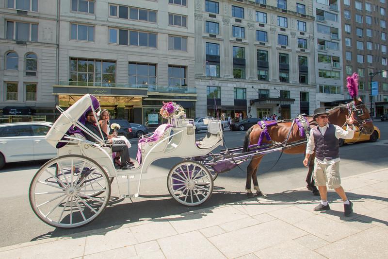 Aisha & Christopher Central Park Wedding-14