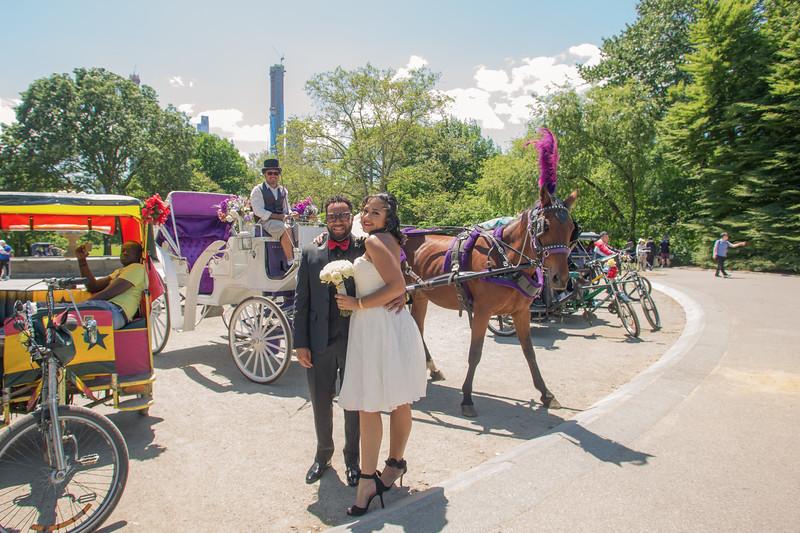 Aisha & Christopher Central Park Wedding-22