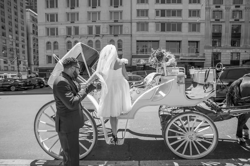 Aisha & Christopher Central Park Wedding-6