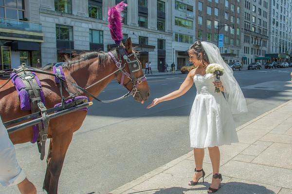 Aisha & Christopher Central Park Wedding-2