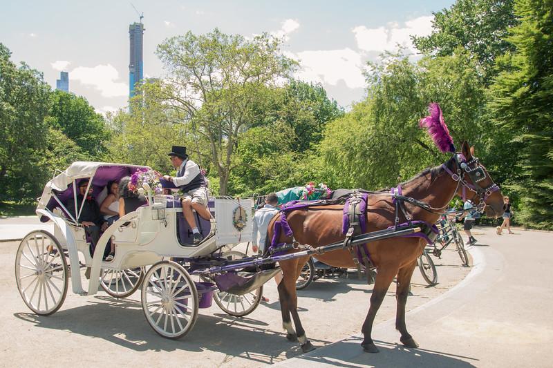 Aisha & Christopher Central Park Wedding-20