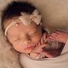 Alaina Newborn Session