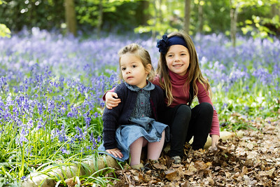 Sisterhood Bluebell Wood Welwyn May 2017