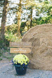 Eatonville_Wedding_photographers_AmyNeil_0007D2C_0686-2