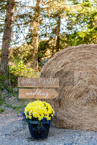 Eatonville_Wedding_photographers_AmyNeil_0009D2C_0686