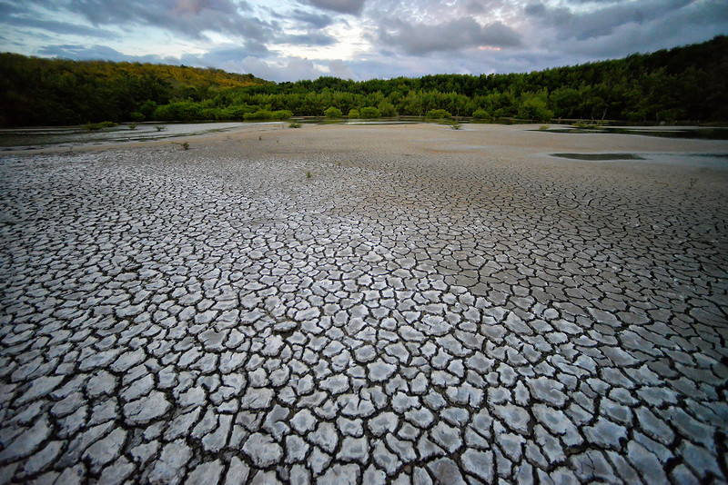 Valley Church mudflat, Antigua, by Ted Lee Eubanks.