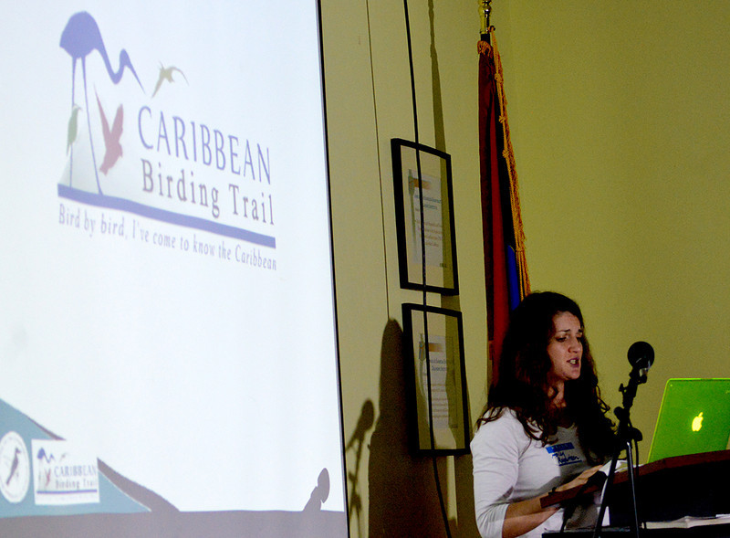 Holly Robertson describing the Caribbean Birding Trail project to those attending the Antiguan avitourism workshop, 25 June 2013, by Ted Lee Eubanks.