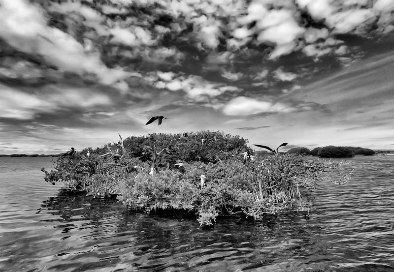 Codrington Lagoon, Barbuda, 2013