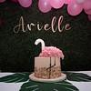 Arielle_1st_Birthday_007