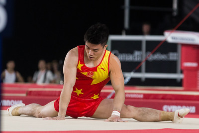 FIG 2017:  Artistic Gymnastics World Championships, Men's All-Around Final October 05