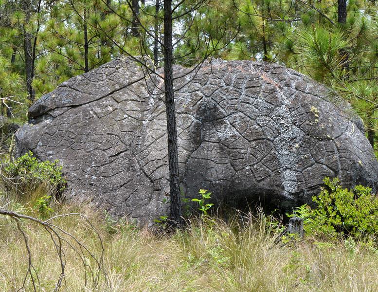 Lava boulder in Parque Nacional Valle Nuevo near Villa Pajon