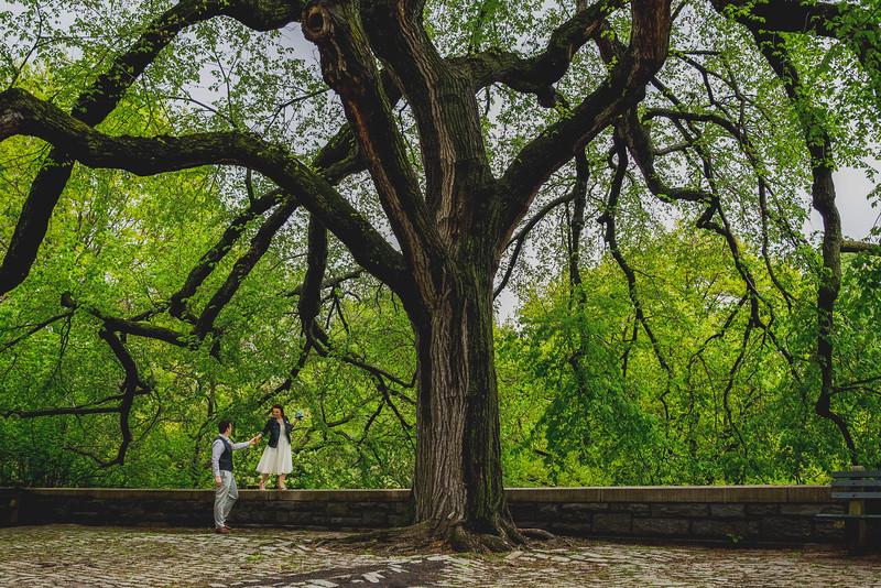 Ben  &  Anna - Central Park Elopement-78
