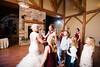 Bill & Stephanie's Wedding-1163