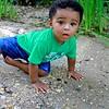 Lucas 022