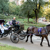 Boda en el Parque Central - Elizabeth & Milagros-3