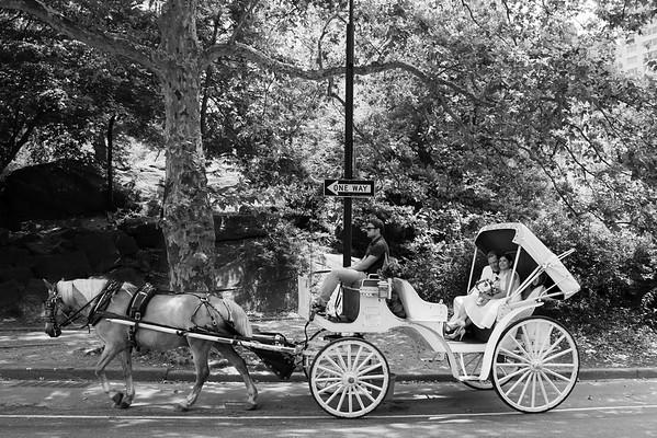 Boda en el Parque Central - Mabel & Nestor-11