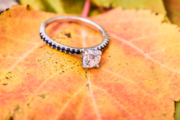 Brad & Nicole's Engagement-0032