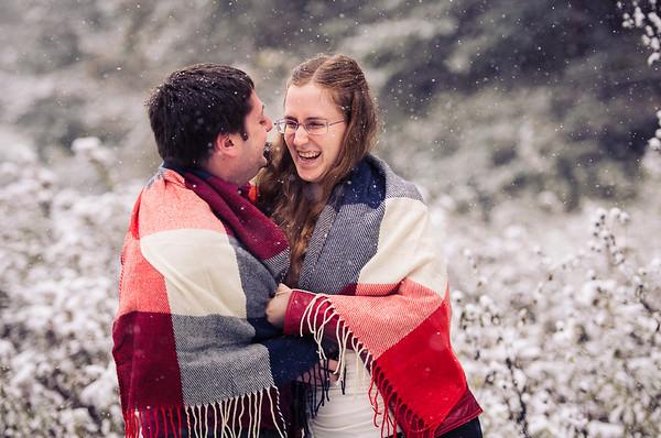 Brandon & Cathy's Engagement-0001