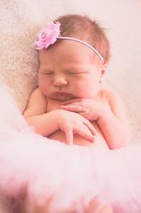 Brandon & Laura's Newborn Portraits-0014