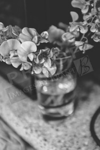 Yelm_Wedding_Photographers_0035_Braun_d2c_9952-2