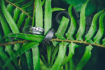 Yelm_Wedding_Photographers_0014_Braun_d2c_9883