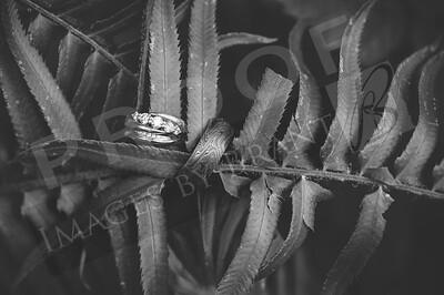 Yelm_Wedding_Photographers_0013_Braun_d2c_9883-2