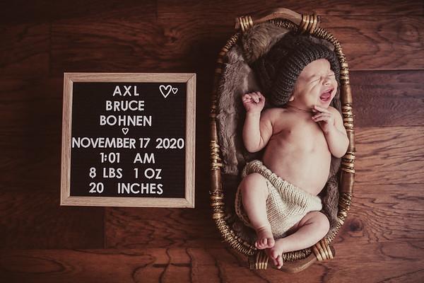 Brett & Anne's Newborn-0012