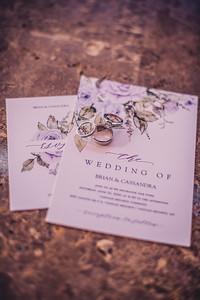 Brian & Cassie's Wedding-4