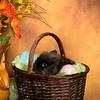 Easter_BT_BehindScenes-018