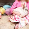 Bunny-2853-Heidtke