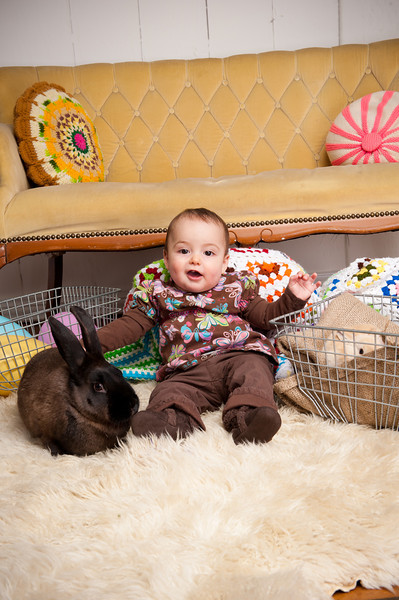 Bunny-2724-Rhyne