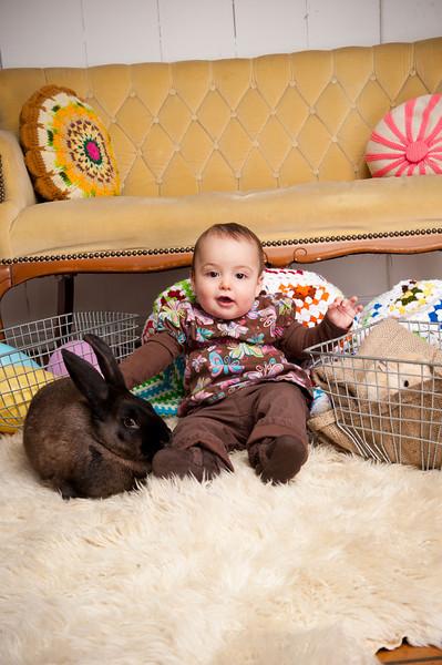 Bunny-2723-Rhyne