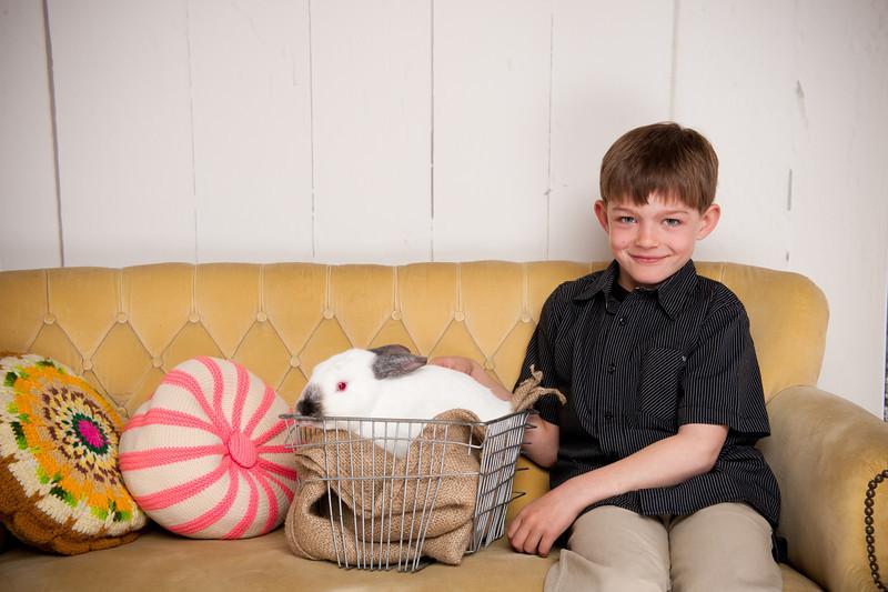 Bunny-3347-smith