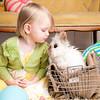 Bunny-2567-whitmore