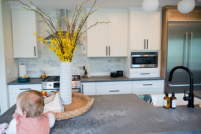 8464 Parkridge Kitchen and Fireplace-19