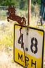 028-CARTM-Stock-BrokenBanjo
