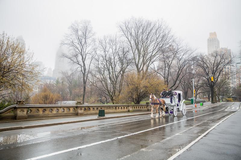 Central Park Elopement - Kathlynne & Kristian-12