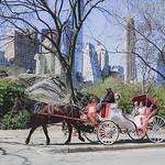 Central Park Elopement - Robert & Deborah-164
