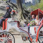 Central Park Elopement - Robert & Deborah-165