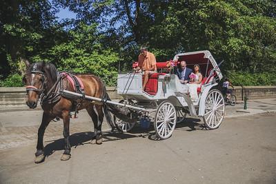 Central Park Elopement - Sophan & Erron-5