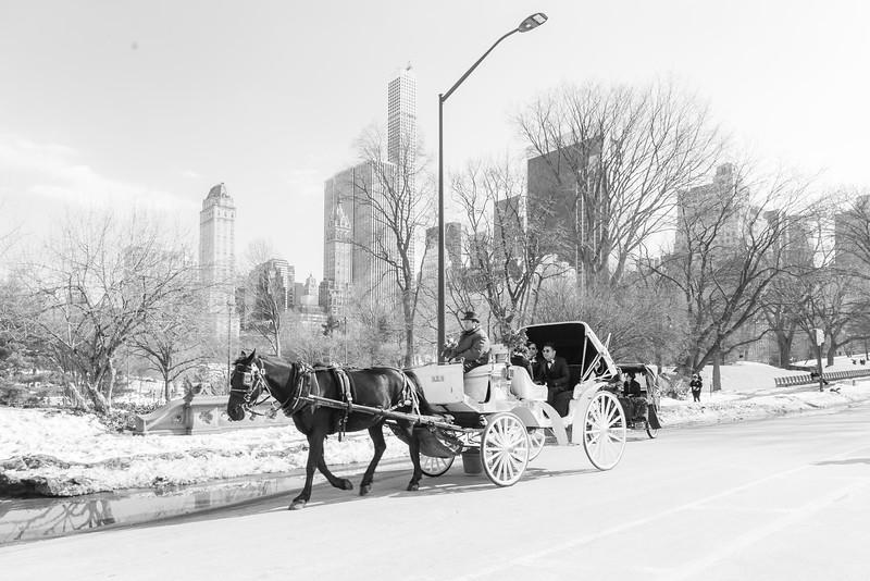 Alexander + Reginald - Central Park Elopement-13