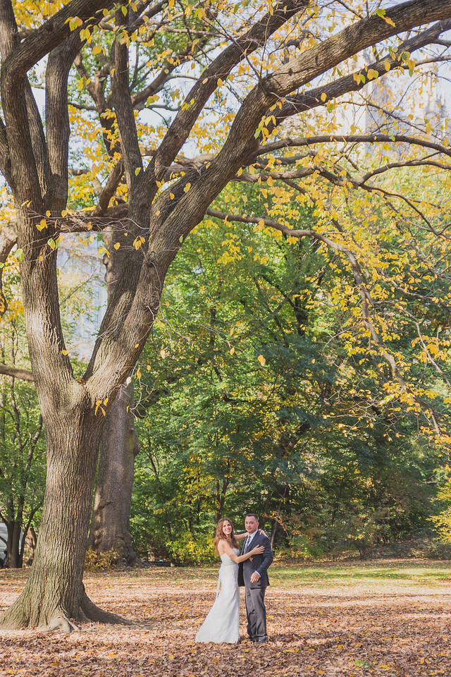 Central Park Wedding - Amiee & Jeff-186