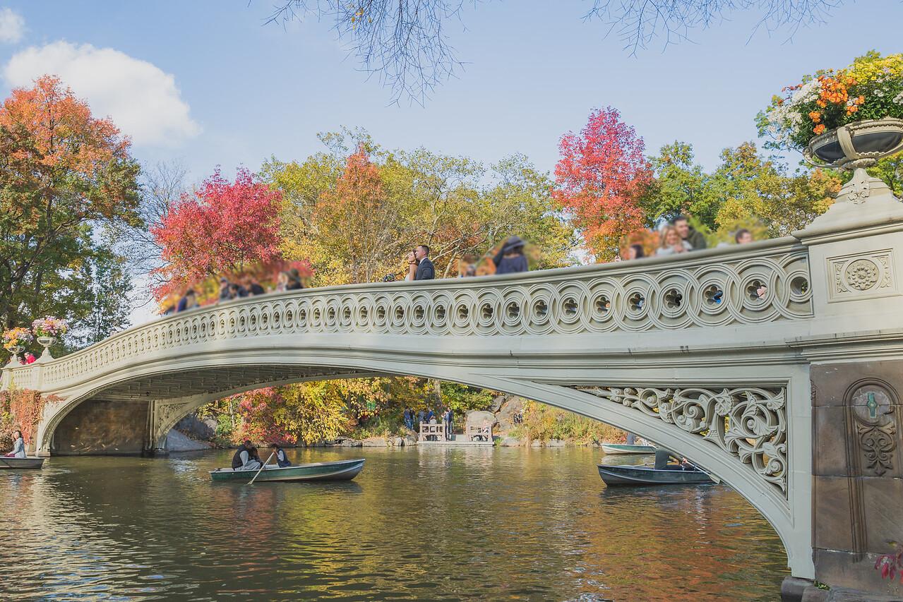 Central Park Wedding - Amiee & Jeff-169