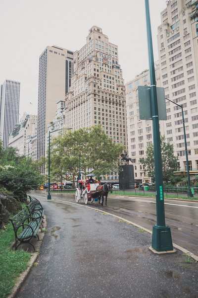 Central Park Elopement - Andrew & Jennifer-14